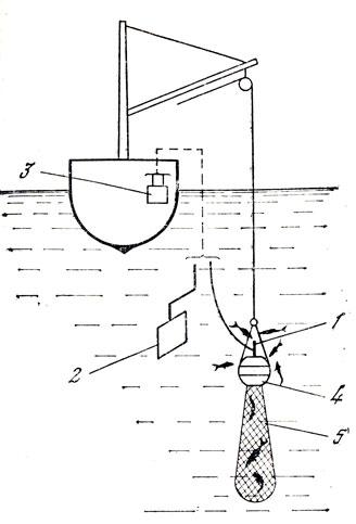 Техника электролова рыбы